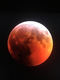 Lunar Eclipse 2019 Kentucky